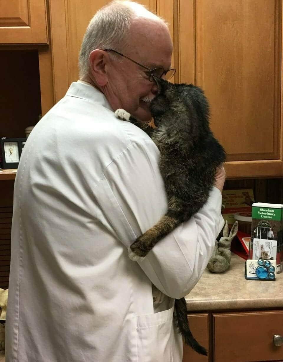 a macskát kezelték hpv impfung schwangerschaft