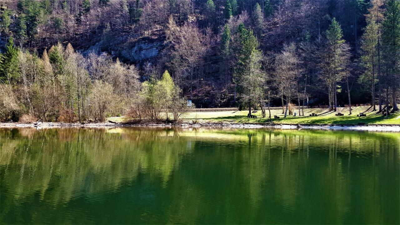 a kerek folyó leírása és kezelése)
