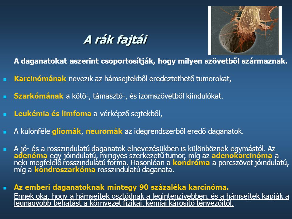 Rákos szarkómák, Orr rosszindulatú daganatai
