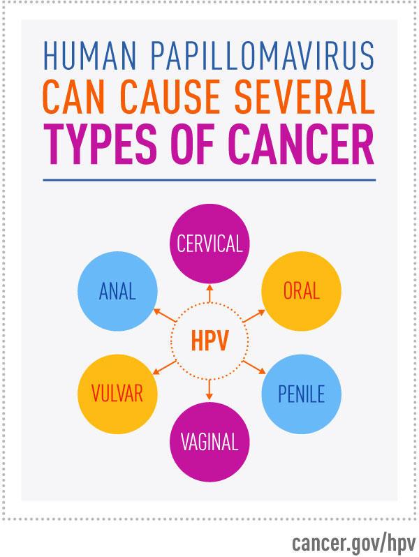 hpv vírus és leep eljárás