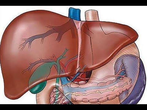 Epe féreg tünetei, Giardiasis tünetei és kezelése - HáziPatika