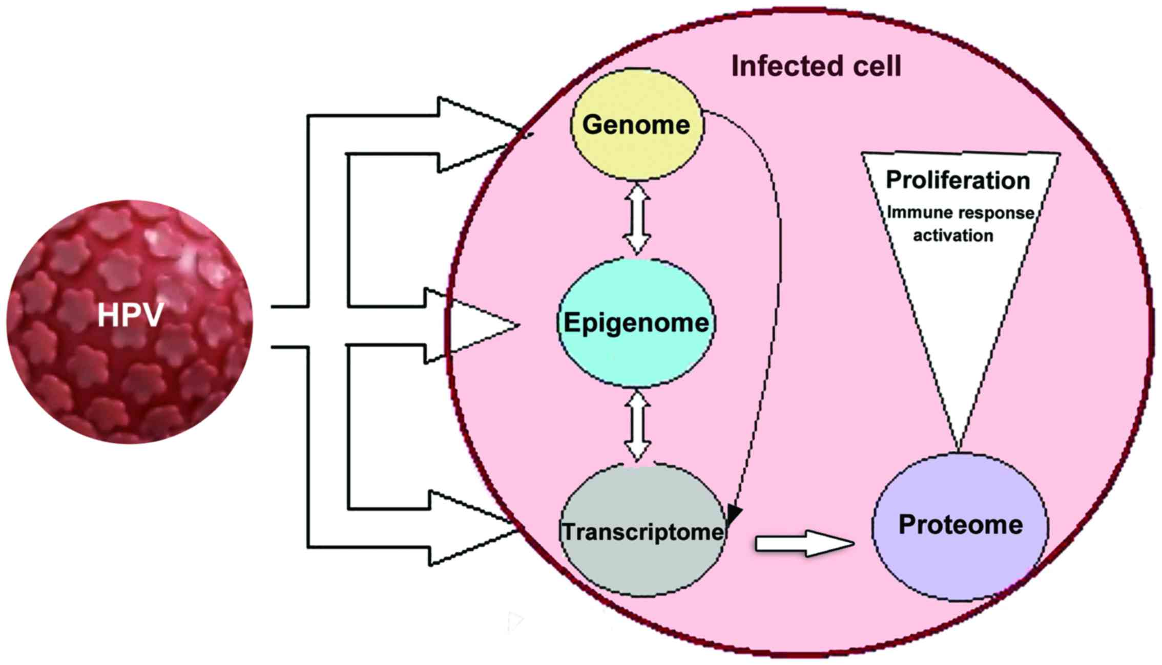 Ha pinwormok jelennek meg, Pinwormok és szövődményeik