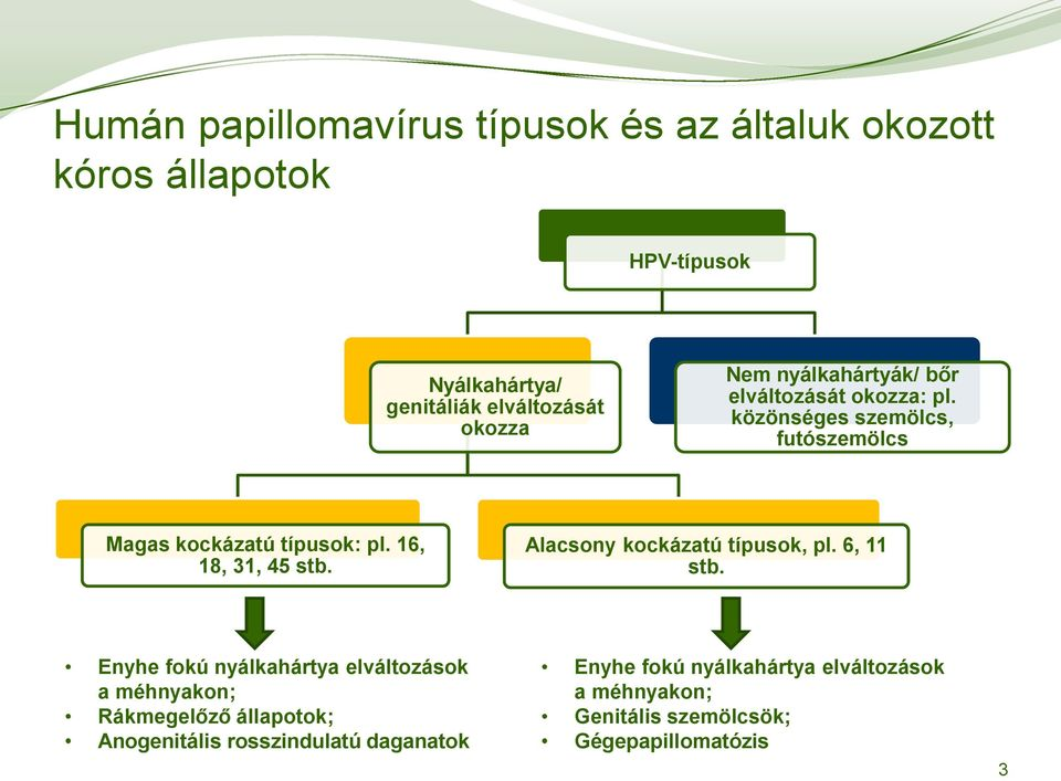 genitális papillomavírus)