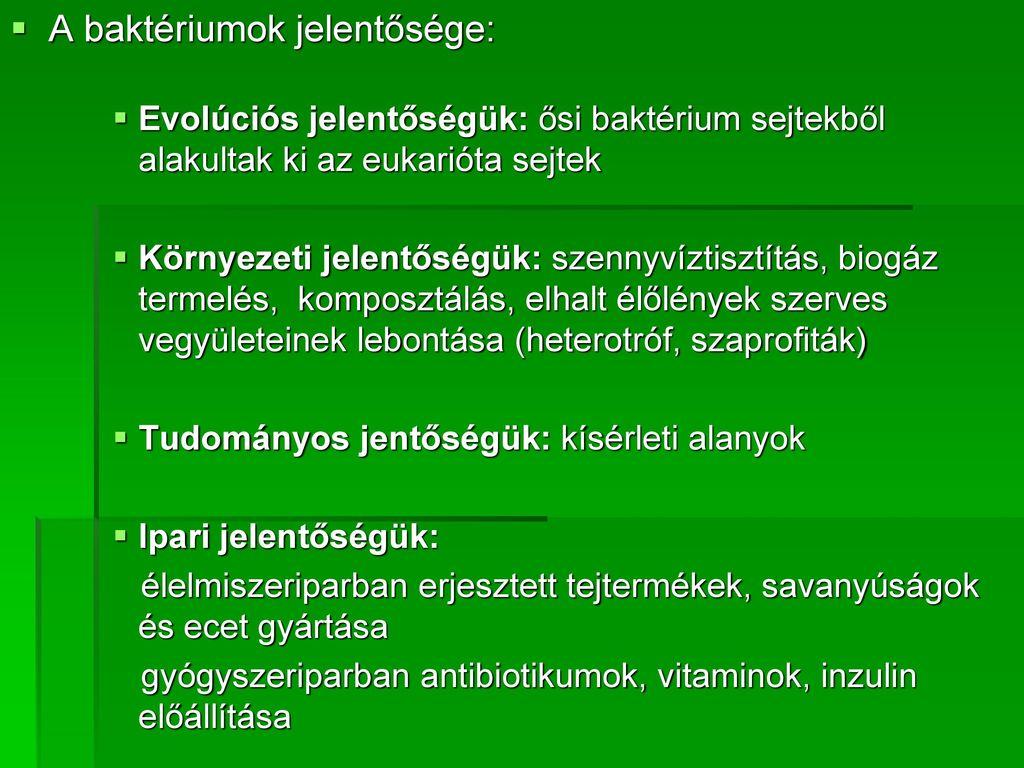 heterotróf baktériumok)