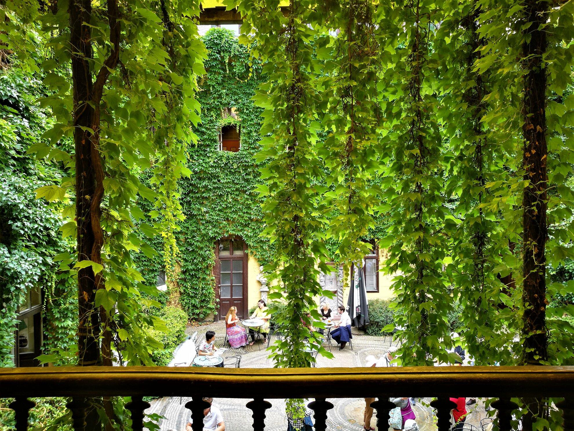A világ szeme elől elrejtett, legjobb kerthelyiségek Budapesten